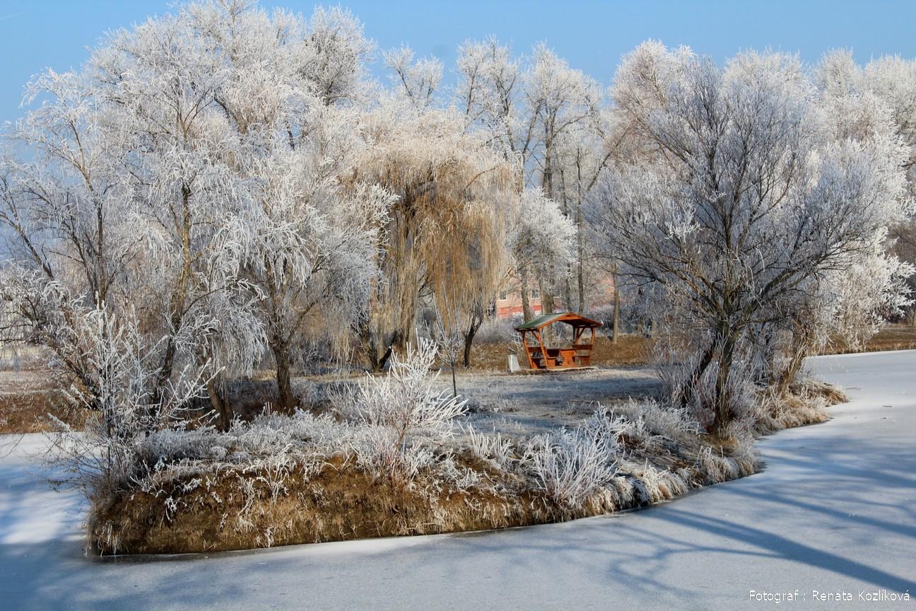 Šurany v zime